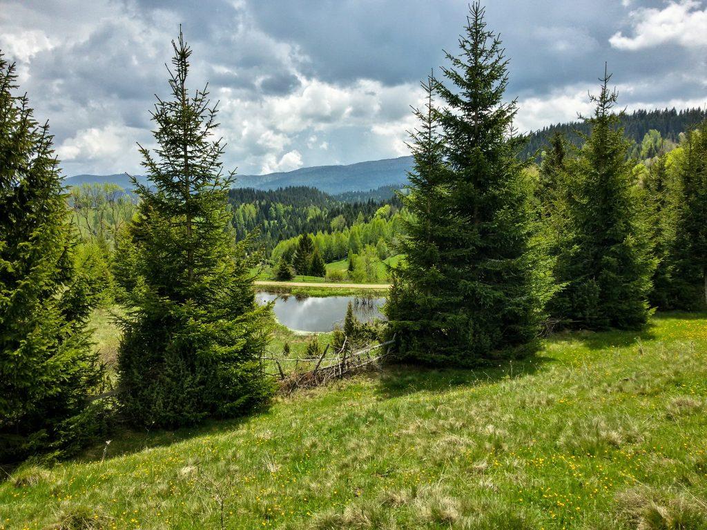 Planina Golija pogled na jezero slika