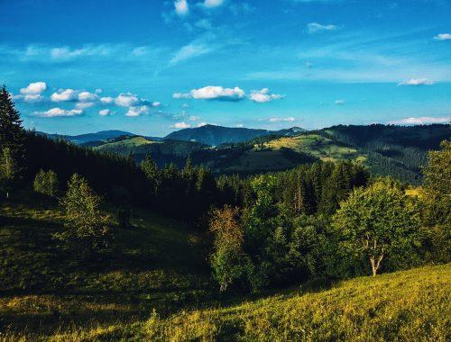 Planina Golija pogled na vrhove