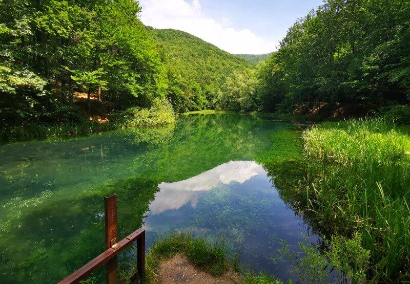 Izletište vrelo reke Grza
