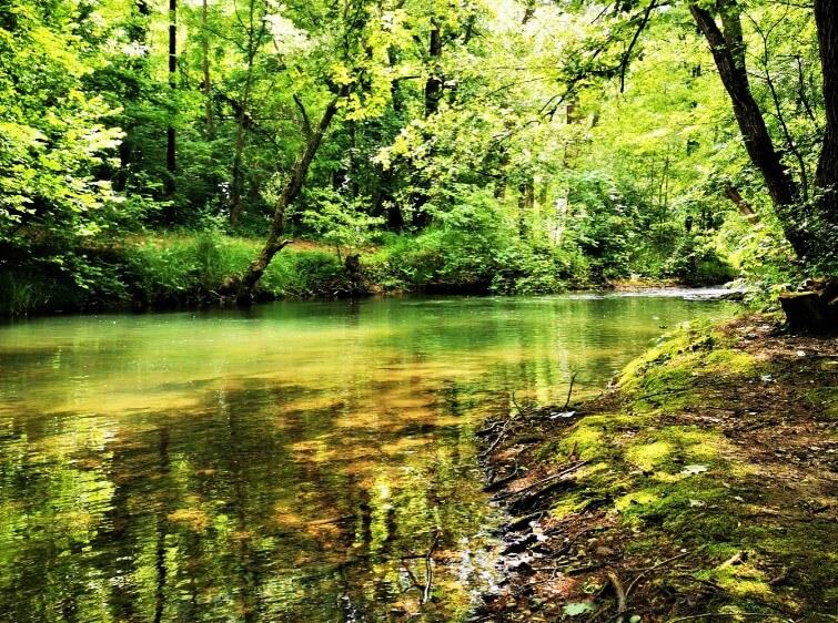 Reka Moravica Sokobanja